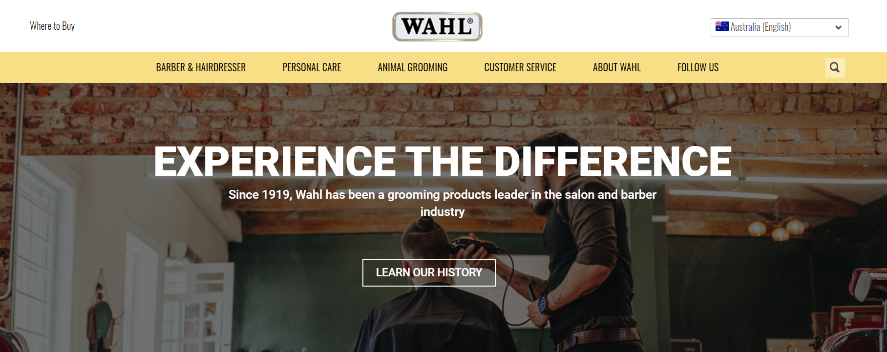 """Top of Wahl Global site homepage hero image that says """"Experience the Difference"""""""